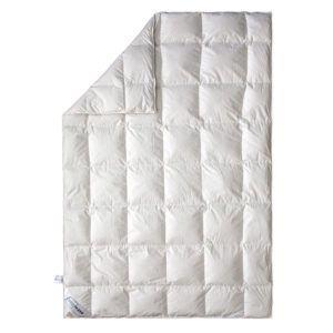 Пуховое одеяло демисезонное SoundSleep Air Soft