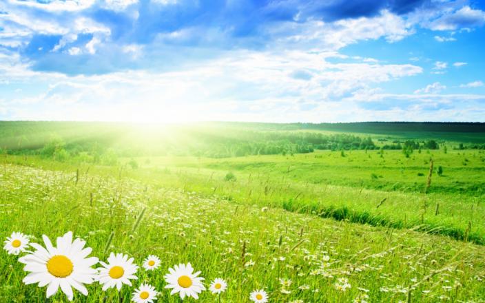 особенности летнего постельного белья